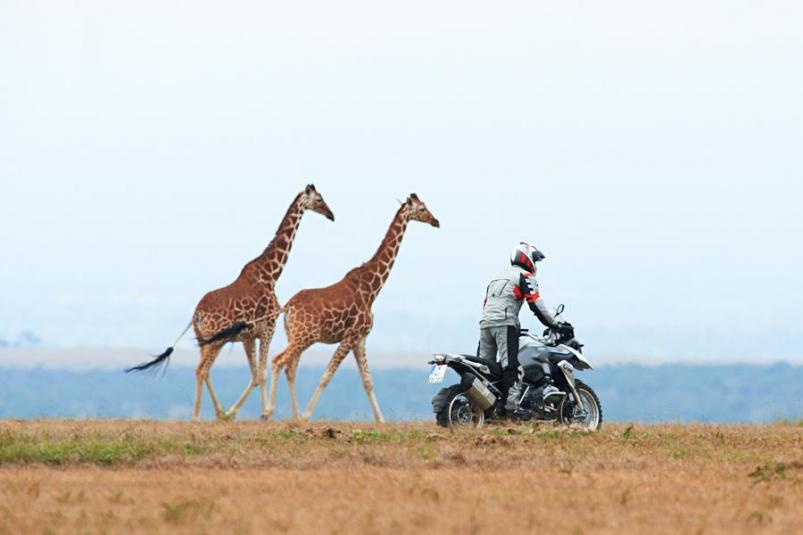Riding by Giraffes on a 2013 BMW R1200GS