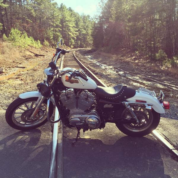 Harley-Davidson Sportster 883 Superlow 2008