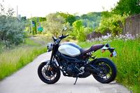 2016 Yamaha XSR900: A Wolf in Chic Clothing